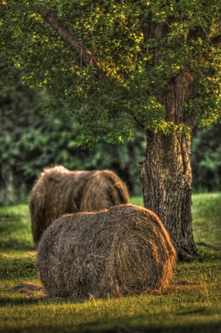 Don Wolf, a photographer who lives in Kansas City, Kan., recently took this photo of Kansas hay bales at sunset. (Photo by Don Wolf/http://don-wolf.artistwebsites.com/)