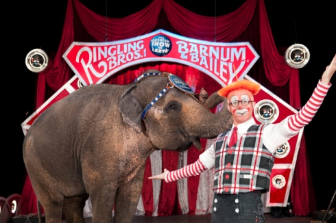Dean Kelley, a Piper High School graduate, will perform with the Ringling Brothers circus this week in Kansas City, Mo. (Photo courtesy of Ringling Brothers)