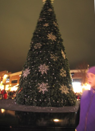 During an hour and a half before the tree lighting, those attending heard live music performances. (Staff photo)