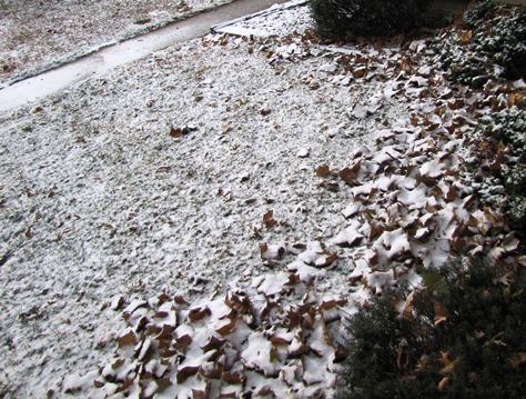 A light dusting of snow was seen in Kansas City, Kan., on Sunday morning.