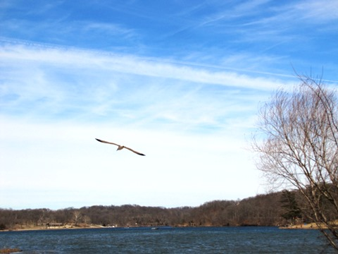 A scene on Saturday, March 14,  at Wyandotte County Lake. (Staff photo by Mary Rupert)