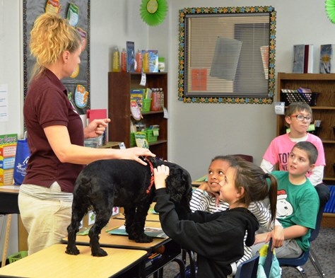 Shelter dogs teach kids about character