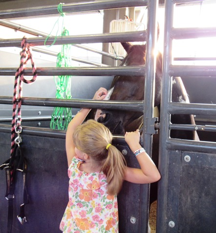 4-H members entered animals at the Wyandotte County Fair. (Staff photo by Mary Rupert)