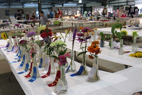 Flower exhibits were holding up pretty well at the fair on Wednesday, considering the summer weather. (Staff photo by Mary Rupert)